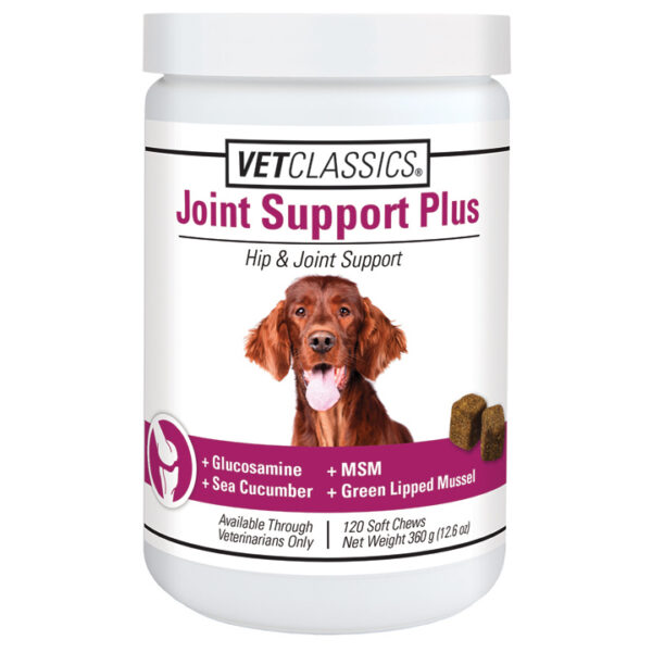 Joint Support Plus Soft Chews