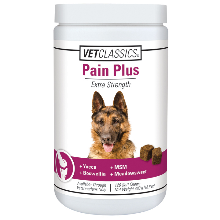 Pain Plus Soft Chews